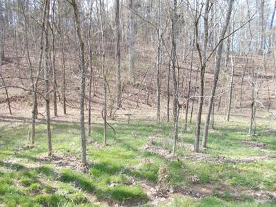 0000 MAYFLOWER RD, Sale Creek, TN 37373 - Photo 1