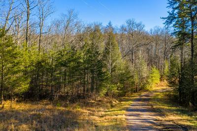 14 GRAY CREEK RD, Graysville, TN 37338 - Photo 1