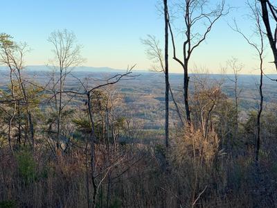 16 DUCKWOOD LN, Evensville, TN 37332 - Photo 1