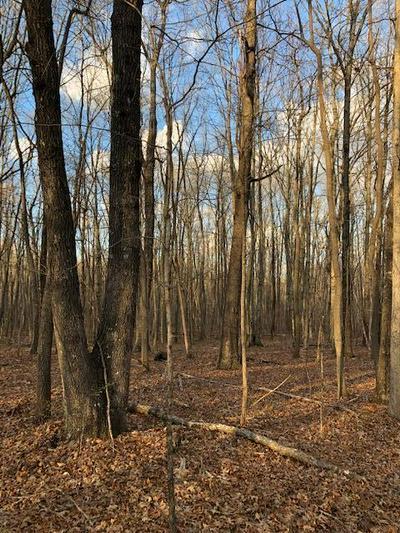 0 LEBERRY LN, Graysville, TN 37338 - Photo 1