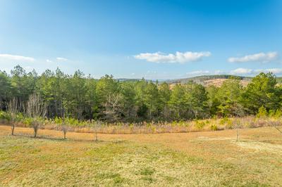 853 RILEY LN, Birchwood, TN 37308 - Photo 2