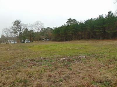 0 MAIN ST, Dunlap, TN 37327 - Photo 2