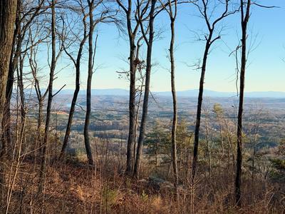 16 DUCKWOOD LN, Evensville, TN 37332 - Photo 2
