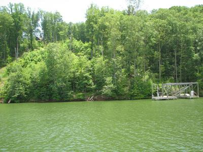 LOT 744&74 OMEGA DR, Spring City, TN 37381 - Photo 2