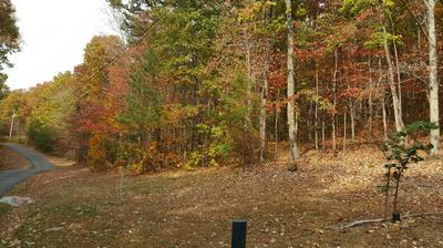 20 BRIER BRANCH RD, Graysville, TN 37338 - Photo 2