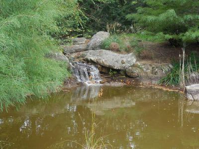 29 RUSHING WATER TRL # A-29, RISING FAWN, GA 30738 - Photo 2