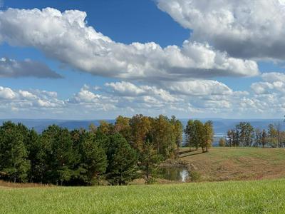 0 JASPER HIGHLANDS BLVD, Jasper, TN 37347 - Photo 1