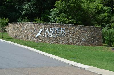 0 HIGH POINT LN, Jasper, TN 37347 - Photo 2
