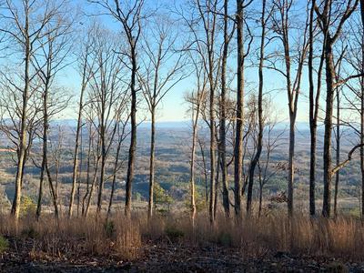 196 DUCKWOOD LN, Evensville, TN 37332 - Photo 2