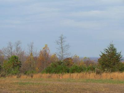 2075 LOWER FIRETOWER RD, Sequatchie, TN 37374 - Photo 1