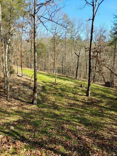 829 SHIPLEY FARM LN, Sale Creek, TN 37373 - Photo 2