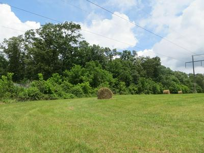 00 OAKES RD, Pikeville, TN 37367 - Photo 2