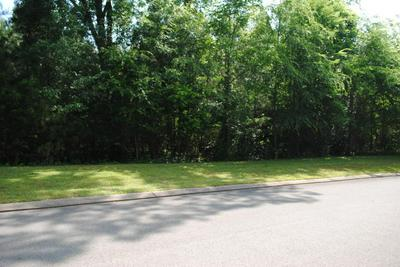 102 RIVER PLACE PT, Birchwood, TN 37308 - Photo 2