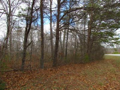 0 STATE ROUTE 56, Coalmont, TN 37313 - Photo 1