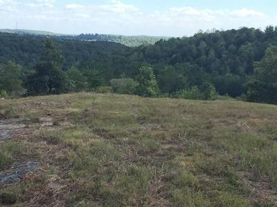 15 EAGLE RIDGE RD, Graysville, TN 37338 - Photo 2