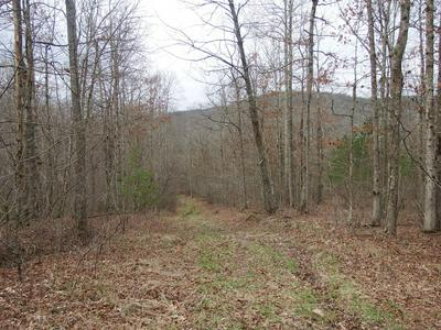 70 HIGHWAY 108, Palmer, TN 37365 - Photo 1