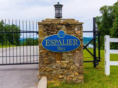 82 ESPALIER DR, Decatur, TN 37322 - Photo 1