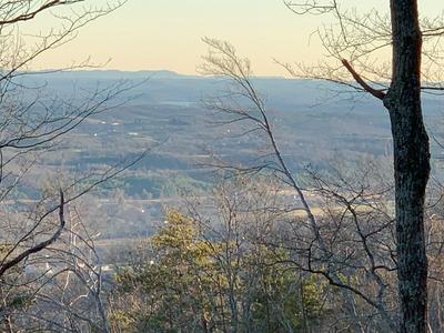 370 DUCKWOOD LN, Evensville, TN 37332 - Photo 2