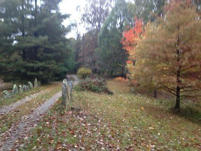 87 FOX TRAIL RD, RISING FAWN, GA 30738 - Photo 1