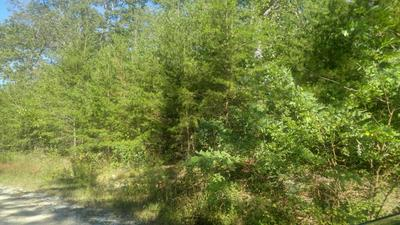 0 MIRROR LAKE RD, Dunlap, TN 37327 - Photo 1