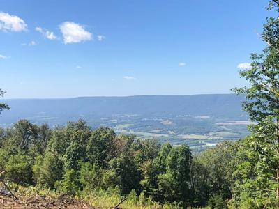 0 S U 127, Signal Mountain, TN 37377 - Photo 1