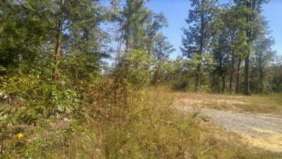 0 MIRROR LAKE RD, Dunlap, TN 37327 - Photo 2