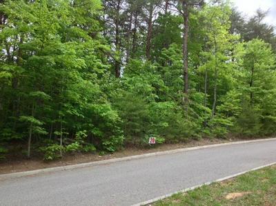 20 DUCKWOOD LN, Evensville, TN 37332 - Photo 2