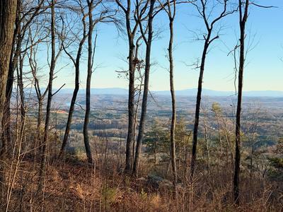 17 DUCKWOOD LN, Evensville, TN 37332 - Photo 2