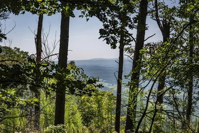 5 TATUM OVERLOOK RD, Cloudland, GA 30731 - Photo 1