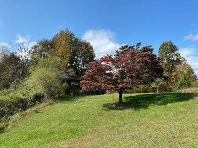 996 W 12TH ST, Chickamauga, GA 30707 - Photo 2