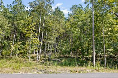0 RAULSTON FALLS RD, Jasper, TN 37347 - Photo 1