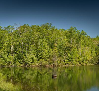 1 TWIN LAKE RD, Cloudland, GA 30731 - Photo 1