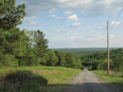 420 RED ROCK CANYON RD, Graysville, TN 37338 - Photo 1