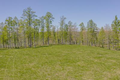 0 SWEEDENS OVERLOOK, Jasper, TN 37347 - Photo 2