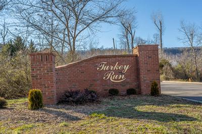 20 TURKEY RUN, Flintstone, GA 30725 - Photo 2