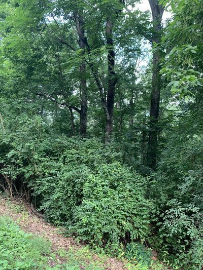0 WHITEHALL RD, Chattanooga, TN 37405 - Photo 1