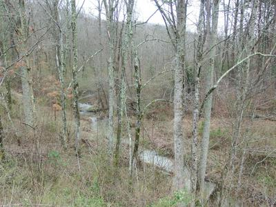 216 HIGHWAY 108, Palmer, TN 37365 - Photo 1