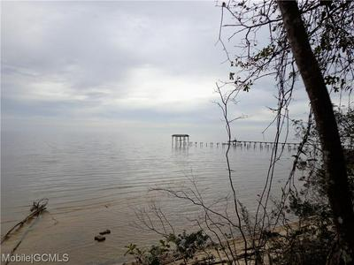 0 DAUPHIN ISLAND PARKWAY, CODEN, AL 36523 - Photo 2