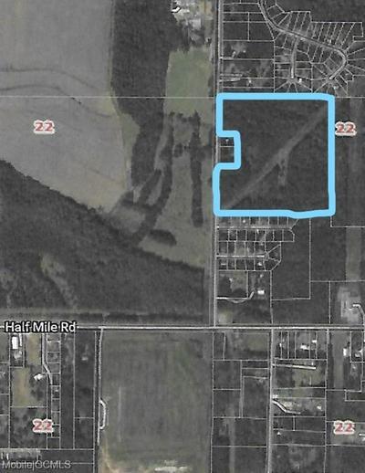 9111 PADGETT SWITCH RD, IRVINGTON, AL 36544 - Photo 1
