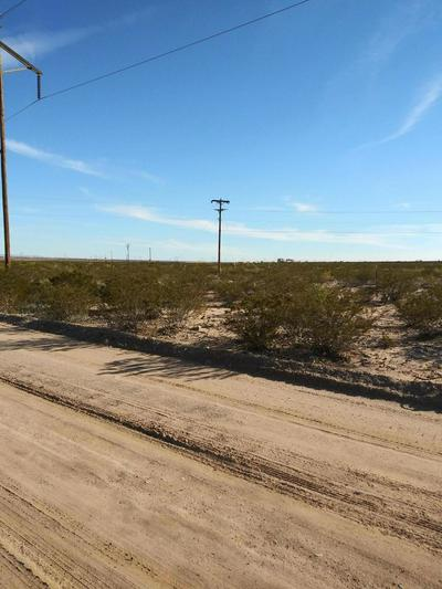 000 COUNTY ROAD A-074, CHAPARRAL, NM 88081 - Photo 1