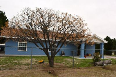 125 MINERIA ST, Fabens, TX 79838 - Photo 2
