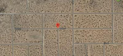 TBD MEDFORD AVENUE, Clint, TX 79836 - Photo 1