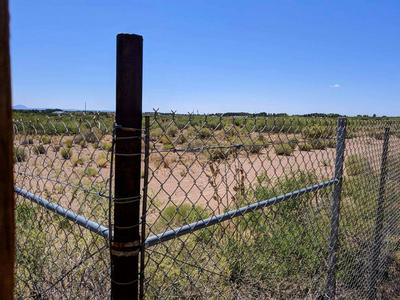 2860 RED STONE ST, CHAPARRAL, NM 88081 - Photo 2