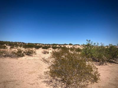 TRACT B KOOGLE, Anthony, NM 88021 - Photo 2