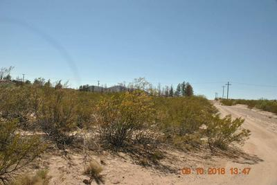 0 ALTA VISTA DRIVE, Chaparral, NM 88081 - Photo 1