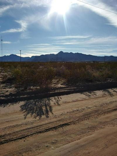 000 COUNTY ROAD A-074, CHAPARRAL, NM 88081 - Photo 2