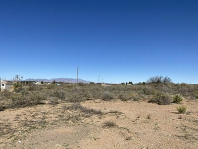 116 E LISA DR, CHAPARRAL, NM 88081 - Photo 2