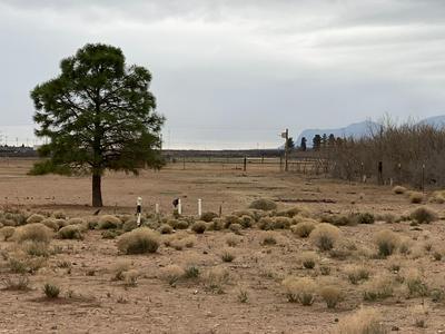 0 JAVALINA, Chaparral, NM 88081 - Photo 1
