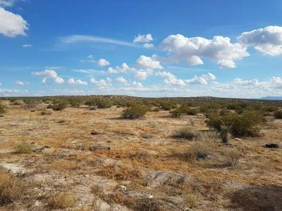 5 FABENS, Fabens, TX 79838 - Photo 1
