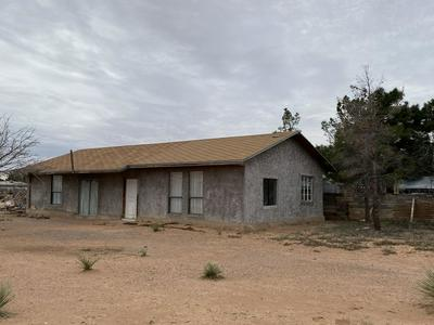 761 AMADOR DR, CHAPARRAL, NM 88081 - Photo 2